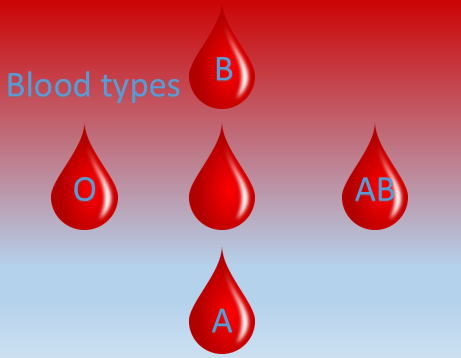 There are four main blood groups  – A, B, AB or O.