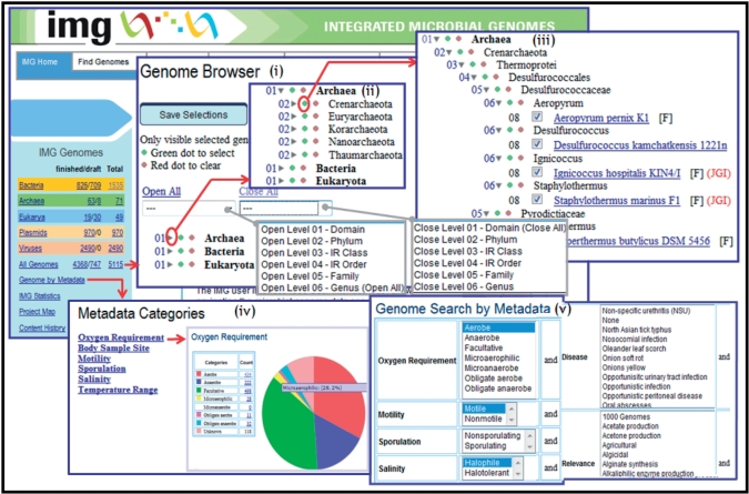 The integrated microbial genomes system: an expanding comparative analysis resource.